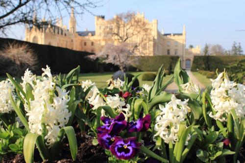 весна в замке Леднице